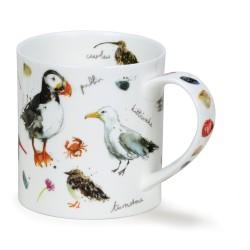 MUG ORKNEY COASTAL BIRDS